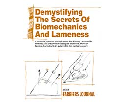 Demystifying Secrets of the Limb