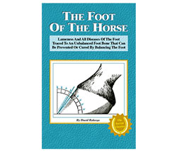 Foot of the Horse