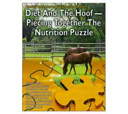Diet And The Hoof - Piecing Together The Nutrition Puzzle