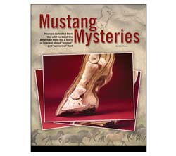 Mustang Mysteries