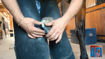 Using Copper Sulfate Spray to Address Hoof Issues